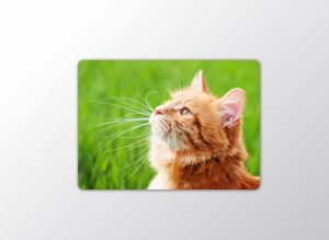 chopping-board-10×14–picture-image